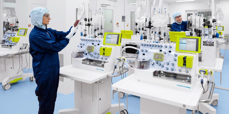 Новые методы мобилизации, изоляции и расширения мезенхимальных стволовых клеток
