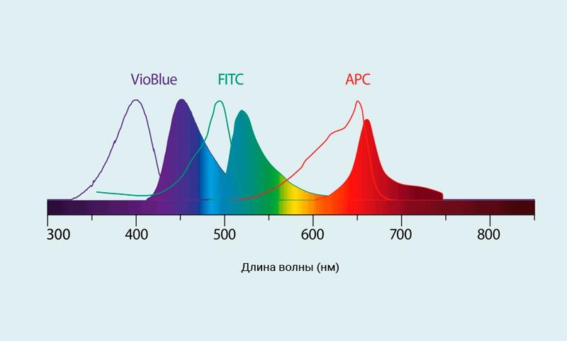 Спектры возбуждения и испускания для флуорохромов