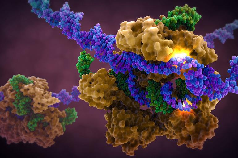 Генетическая трансдукция