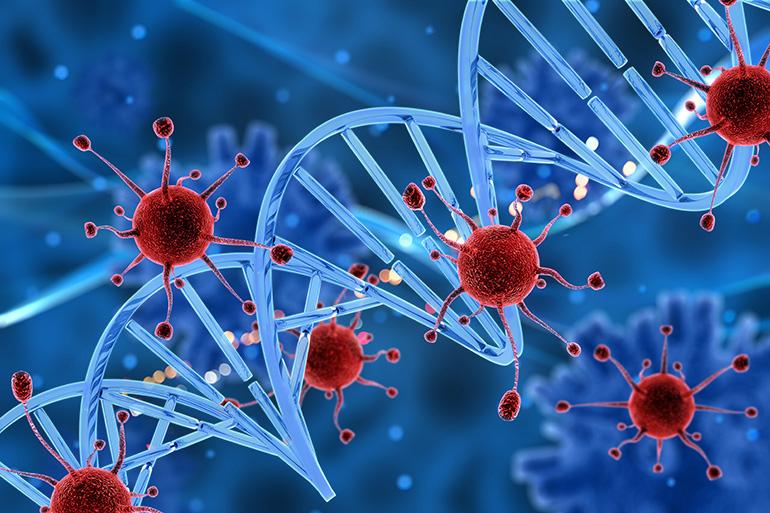 События в клетке реципиента
