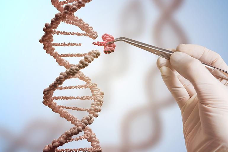 Что такое генетическая трансдукция